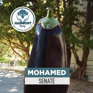 Harmony Mohamed